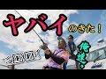 大阪湾の奇跡!超巨大魚のナブラに遭遇!F×Fその2
