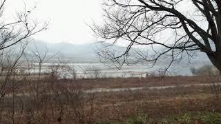옛날 농림고등학교 앞 소풍가던 모래섬과 낙동강 보