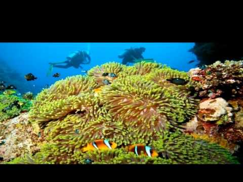 Red Sea Deals - Red Sea Holidays and Vacations