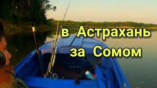За сомом в Астрахань часть 1 A trip to Astrakhan for catfish part 1