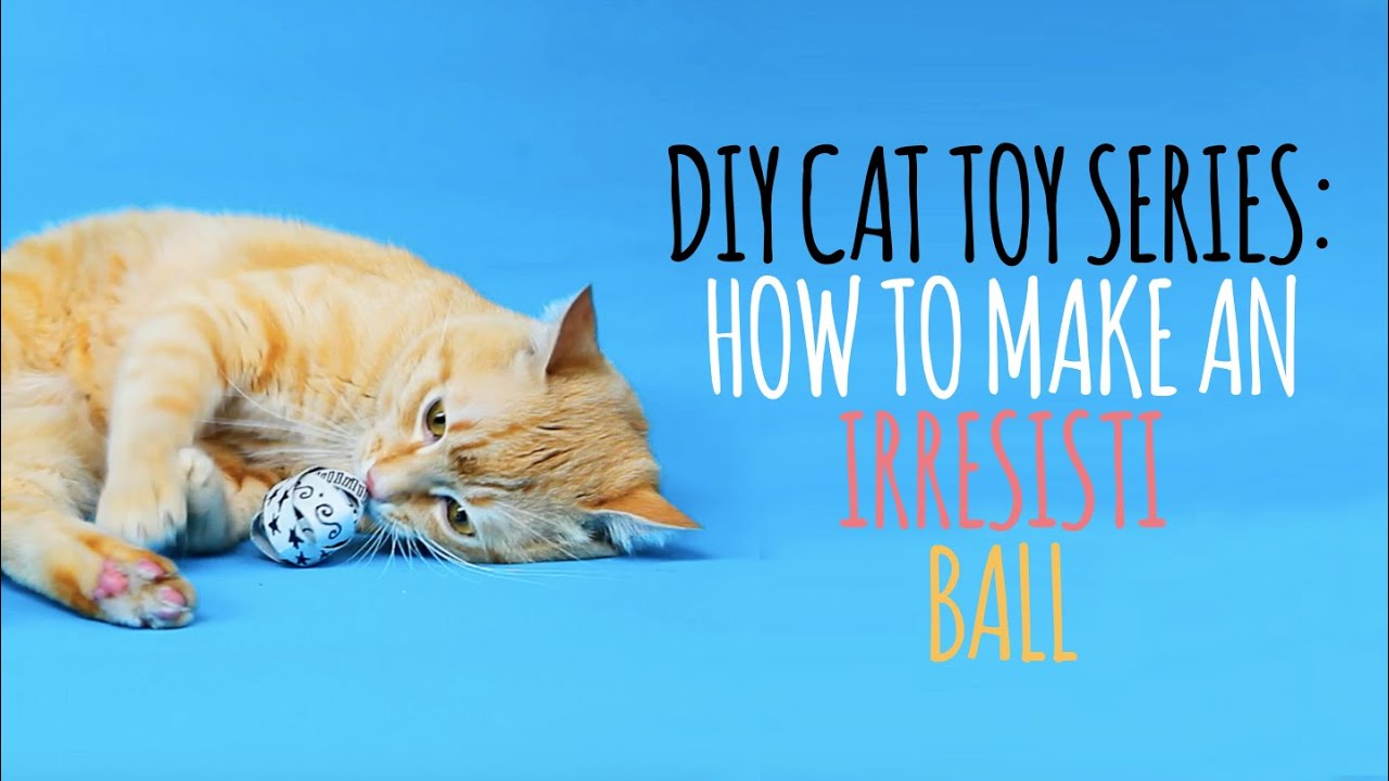 DIY Cat Toys - How to Make an Irresistiball - YouTube
