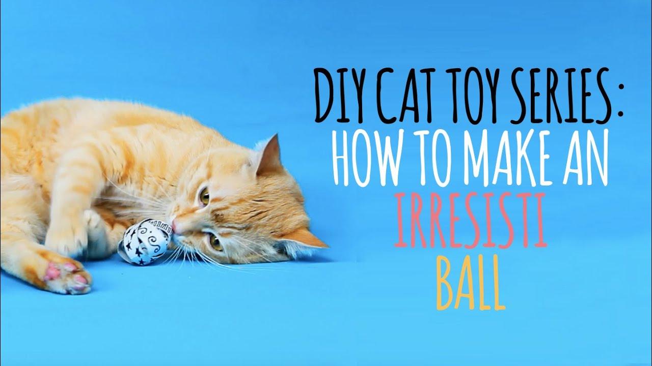 Diy Cat Toys Easy