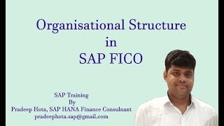 SAP FI Organisation Structure | Enterprise Structure in SAP FI