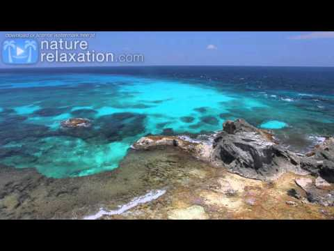 4K Mexico   Beyond Blue  ft  LIQUID MIND Mexico Reef Scenes Nature Relaxation Video 2
