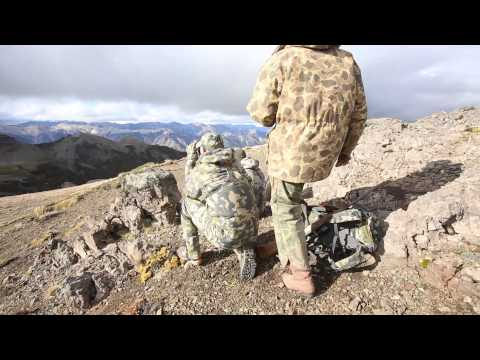 Argentina Red Stag Hunt In Patagonia: Riding In Ashes