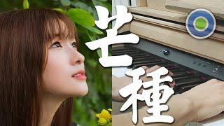 芒種 鋼琴版 (主唱: 趙方婧 )