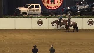 2018 Quarter Horse Congress Masters 2YO Western Pleasure