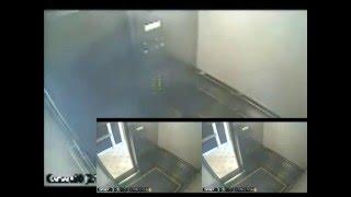 Elisa Lam Elevator Surveillance Video 03 - The White Column!
