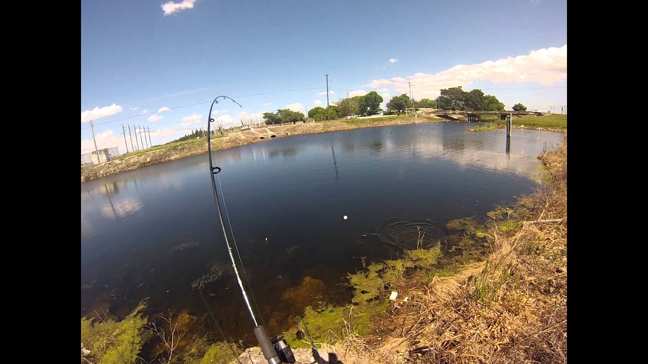 Fishing the everglades youtube for Fishing in the everglades