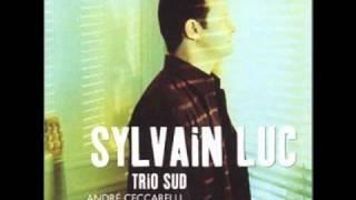 Sylvain Luc - Jordu.wmv