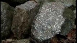 未来を創る科学者達 (10)岩石から読み解く地球の歴史 ~丸山茂徳~
