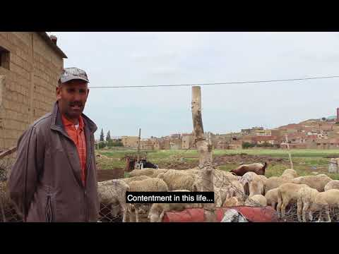 Algerian Sheepherders Face Climate Change