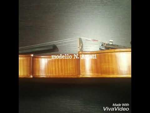 Violin model N.Amati (Daniele Ranieri luthier)