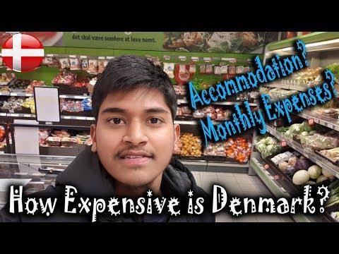 LIVING COST in DENMARK [ Inside-outside COPENHAGEN ]. How to expense.