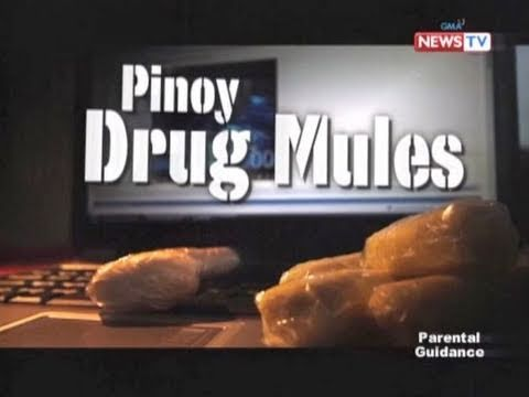 poverty and filipino drug mules No 'midnight express' for filipina drug mule  with more than 600 cases of filipino drug couriers arrested in  these drug mules will continue to risk their.