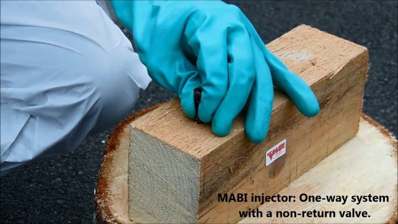 Wood Treatment For Termites And Other Wood Destroying Organisms Mabi Usa Youtube