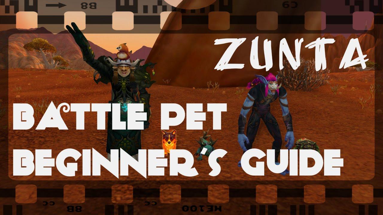 Battle Pet Beginner's Guide [Episode 1] - Zunta, The Pet Tamer