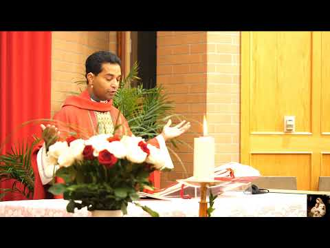 Mary Mother of the Redeemer Parish: Confirmations 2020