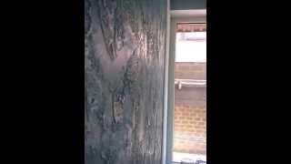 видео Спальня «Ирис» (Дуб Бодега) Компоновка 5