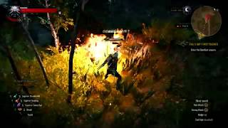 The Witcher 3 Xp Glitch 1 62