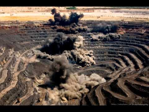 Живительная сила Земли. Полезные бактерии для почвы