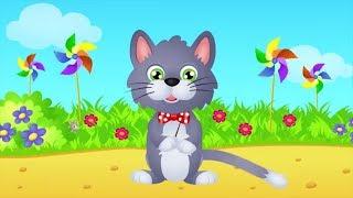 Bajkowe teledyski dla dzieci - Wlazł kotek