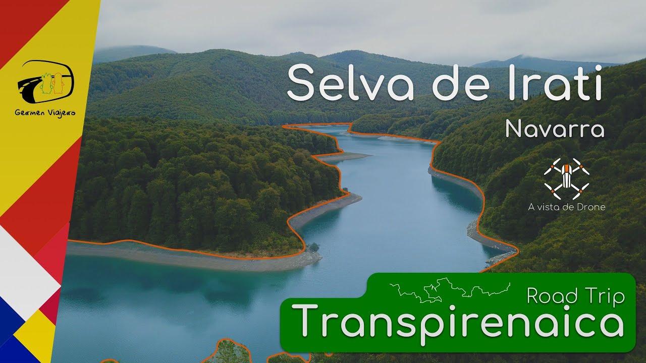 Mapa Selva De Irati.Rutas De Senderismo Por La Selva De Irati Germen Viajero