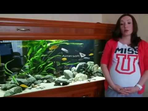 глисты + у аквариумных рыб