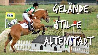 [Turnier] Dressurhaflinger Amani | Gelände-Stil-E | Hafiturnier Altenstadt 2015