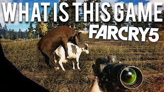 WTF is Wrong with Far Cry 5 ?