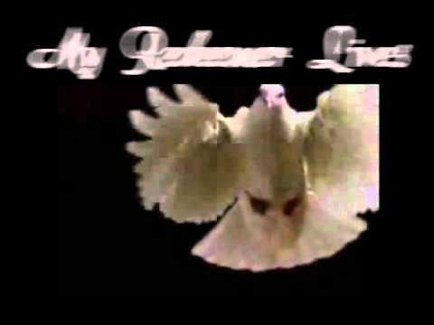 MY REDEEMER LIVES   NICOLE C MULLEN VIDEO WITH LYRICS