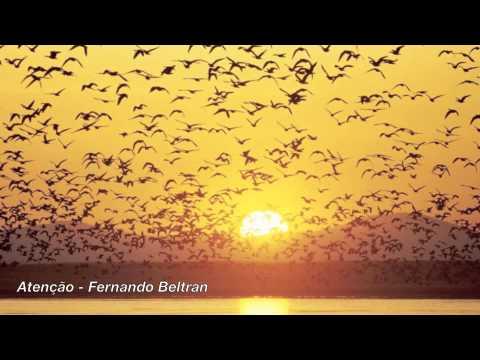 Fernando Beltrán - Atenção mp3 ke stažení