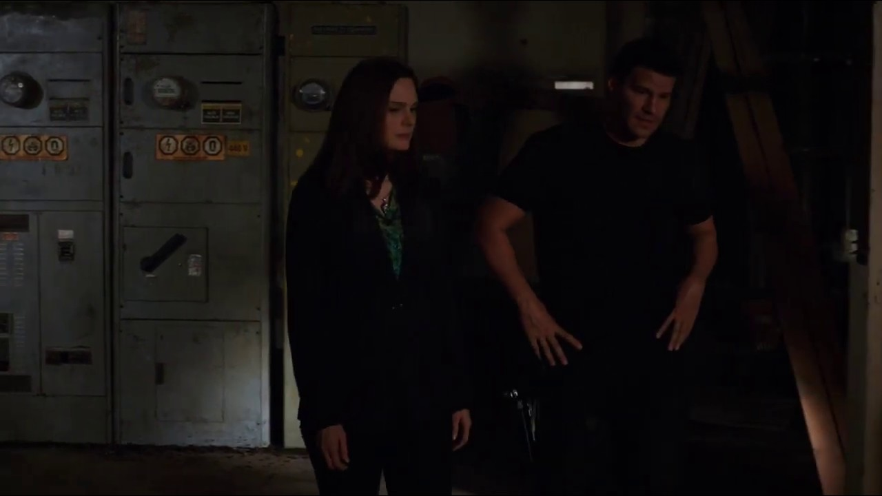 """Download Bones 9x04 - """"Bones, if I ask you to marry me, will you say 'yes'?"""""""