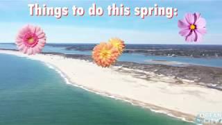 Spring in Ocean City