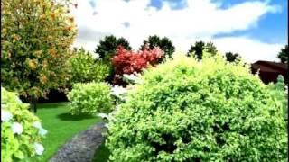Ландшафтный проект Сад на лесной поляне