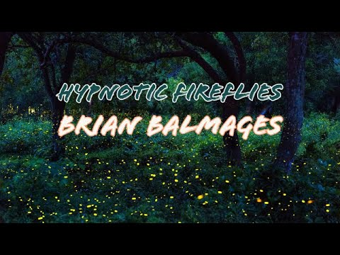 Hypnotic Fireflies Brian Balmages