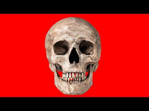 Gmod - DeathRun w/ Illusive, GrizzlyGamer