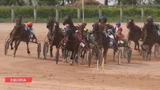 Vidéo de la course PMU GRAND PRIX DE CHERBOURG-EN-COTENTIN