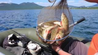 Рыбалка на озере Щучьем. Боровое. Ловля окуня.