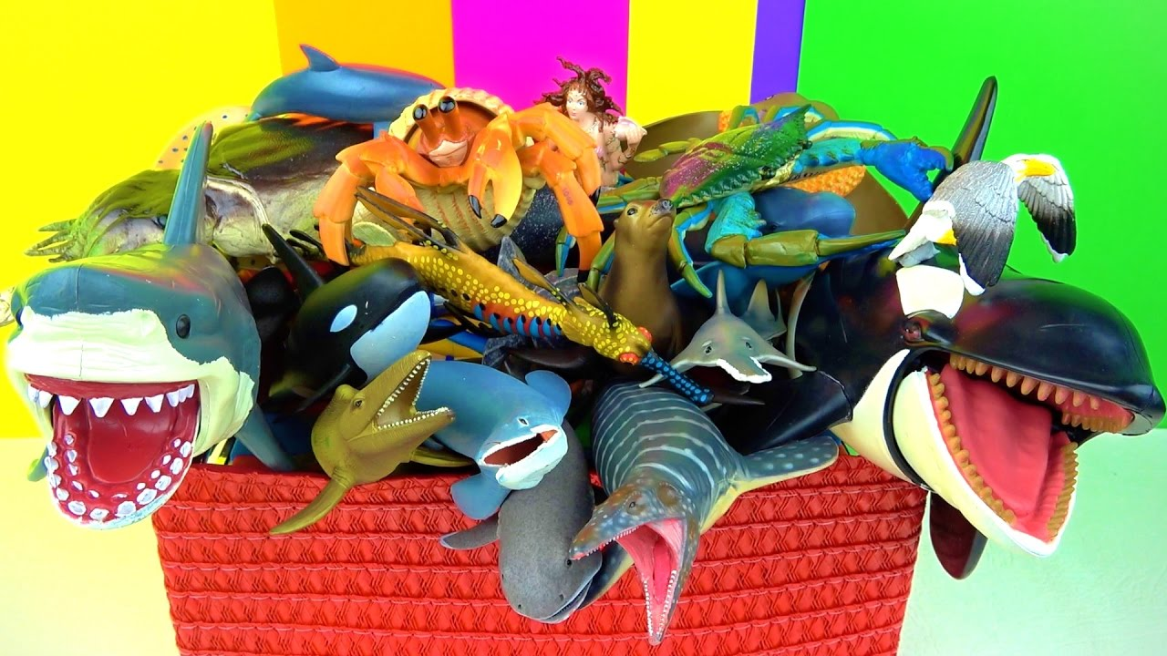 Toys For Fish : Learn about sharks whales fish sea animals kids toys
