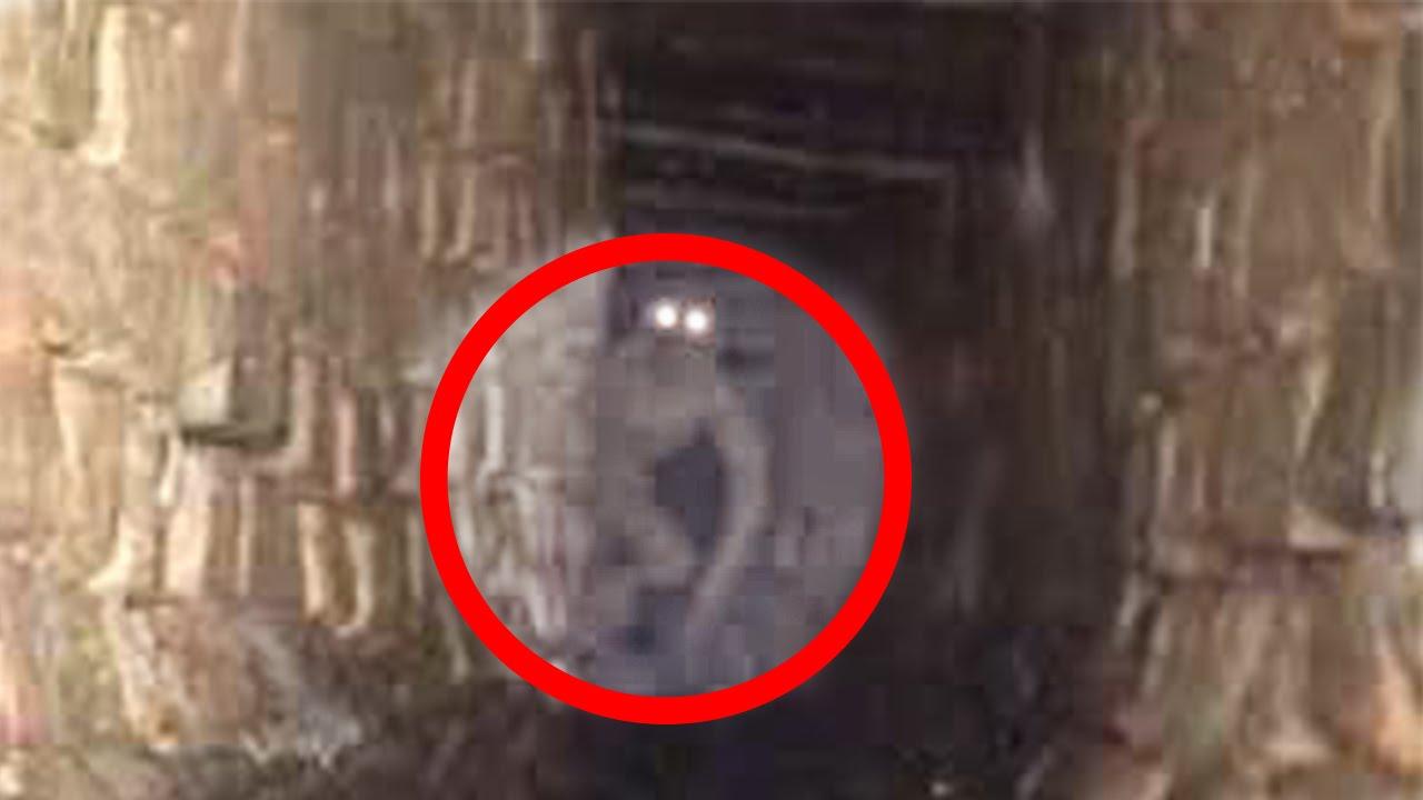 Le 5 Creature Pi 249 Inquietanti Riprese Dal Vivo Youtube