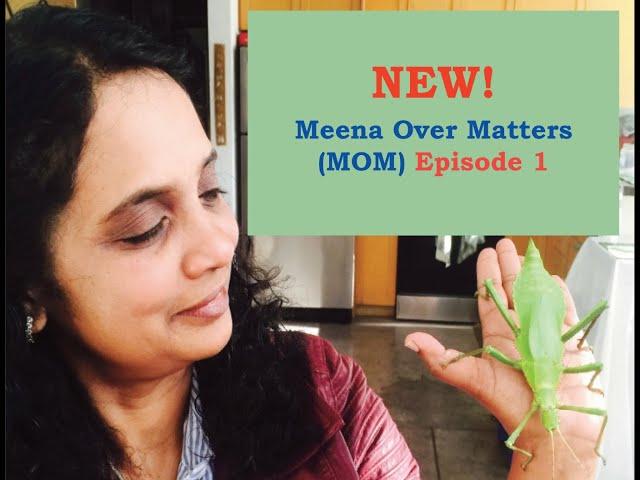 Meena Over Matters Episode 1