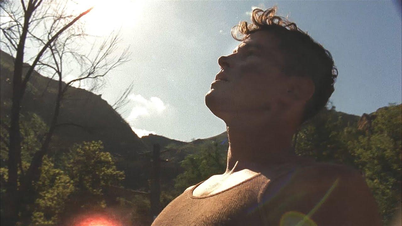brazilian facial videos