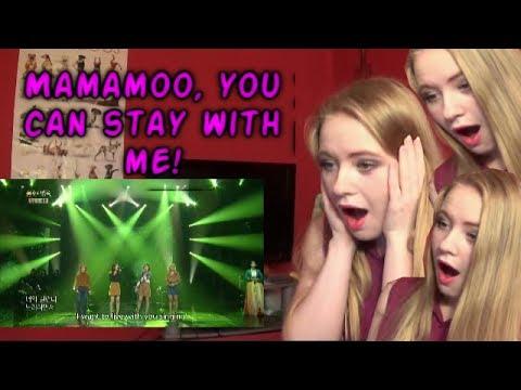 REACTING TO MAMAMOO - BACKWOODS (Immortal songs 2)