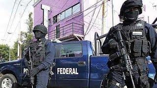 RANGOS DE LA POLICIA FEDERAL