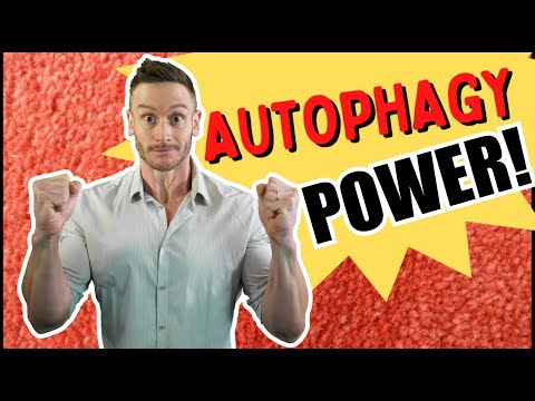 Powerful New Benefit of Autophagy & Fasting