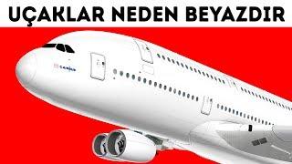 Uçaklar Neden Neredeyse Daima Beyazdır