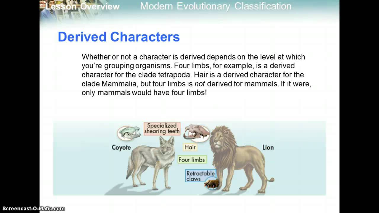 18.2 Modern Evolutionary Classification and Cladograms ...