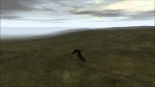 DayZ Serverabsturz führt zum Vogelflug