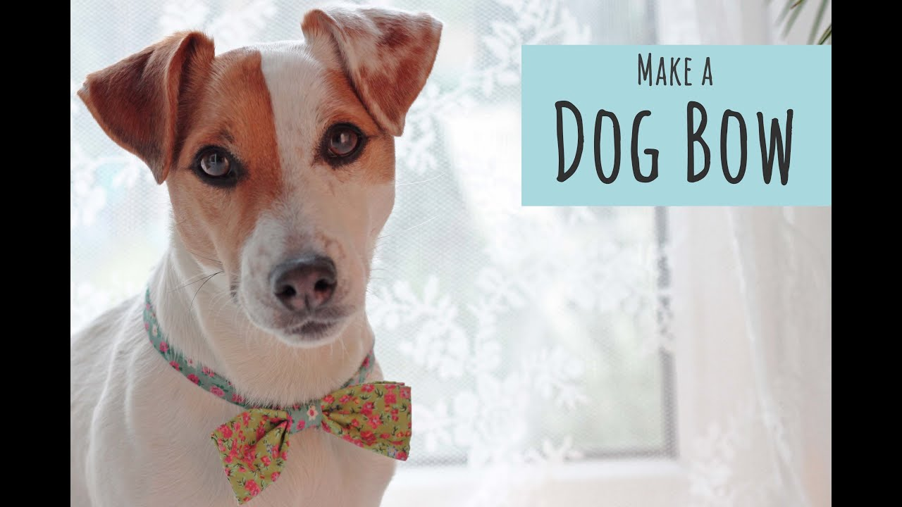 No Sew Dog Bow Tie Collar Slide Helpful Homemade